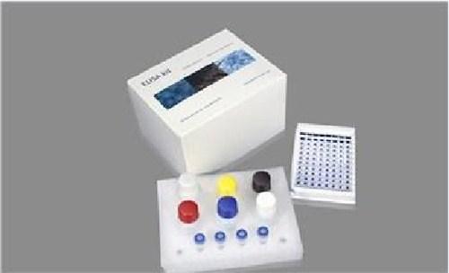 水通道蛋白ELISA试剂盒