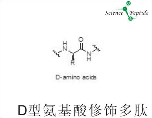 D型氨基酸修饰多肽厂家