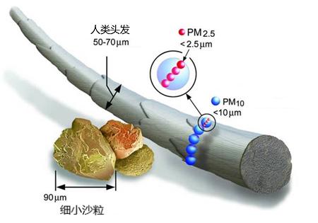 上海中學一氧化碳治理 承諾守信 凱菲特供應