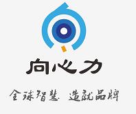 深圳向心力知识产权有限公司