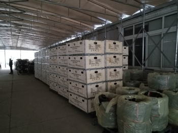 上海钢带箱批发 上海嘉岳木制品供应
