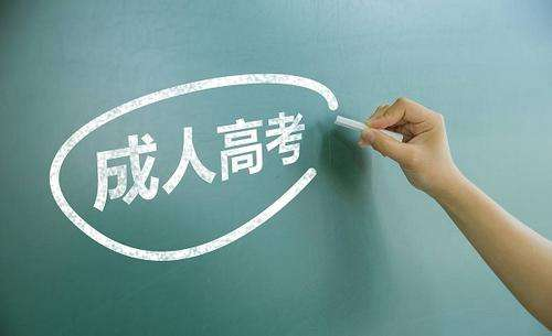 涉县附近成人教育价格 客户至上 尚程供应