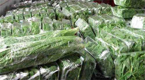 昆山市专业蔬菜供应服务 苏州禾子生态食品供应