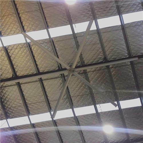 上海工廠大型通風扇永磁同步吊扇哪家好 上海愛樸環保科技供應
