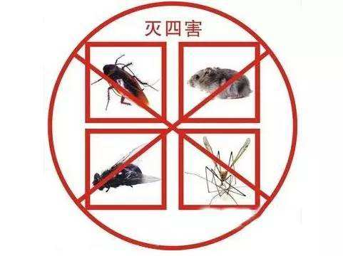 三门峡饭店除害虫多少钱 北京鹏辉生物科技供应