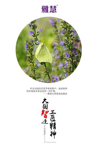 国产奶粉排名 秦龙雅慧乳业