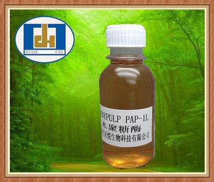纸浆漂白和纸浆精化的木聚糖酶