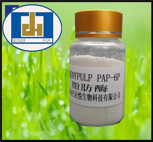 造纸酶脂肪酶用于制浆和精化加工