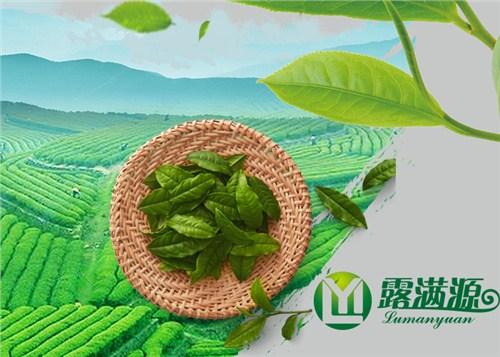 正宗茶叶淘宝店「露满源供应」