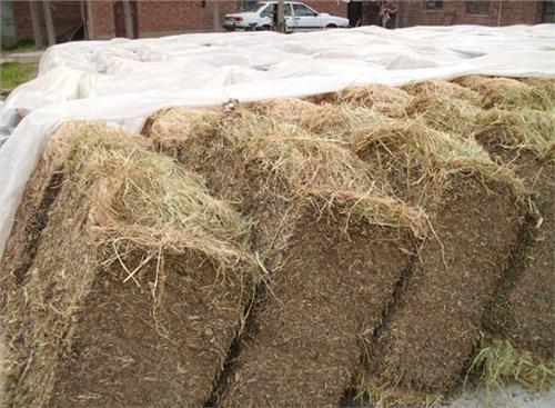 徐州稻草秸秆纤维