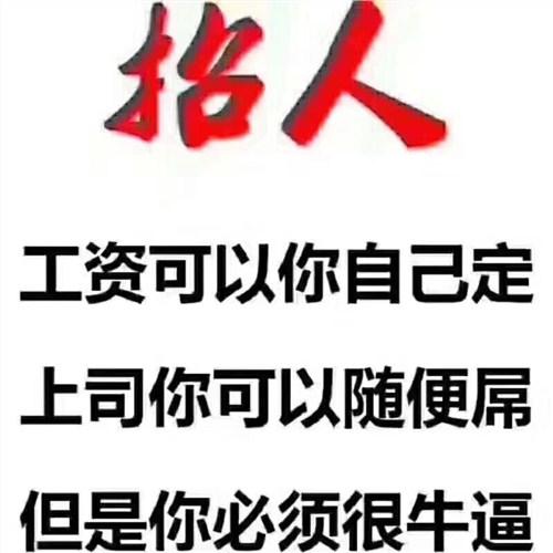 上海招聘 客户顾问招聘 业务招聘业务经理