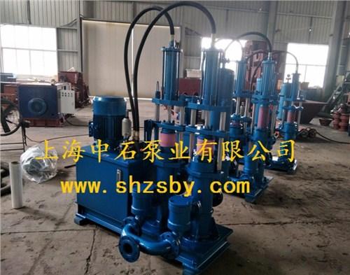 压榨机进料泵 压榨污泥上料泵 淤泥处理泵-上海中石