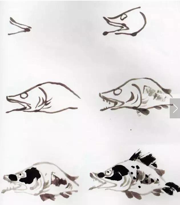 国画鱼的写意画法,国画初学者鱼的各种画法步骤详解图片
