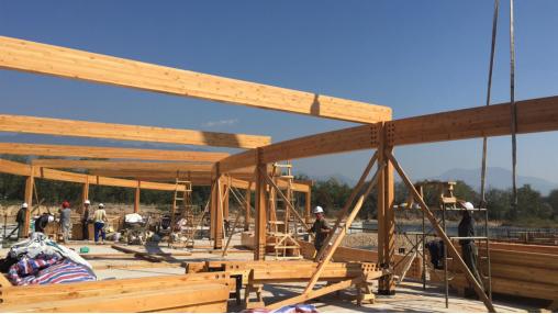 异形梁木结构,异形梁木结构建筑设计,融嘉供