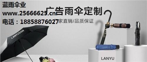 浙江蓝雨伞业有限公司