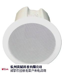 音响喇叭供应商 英韬科技