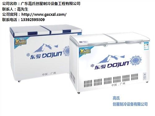 深圳板门双温冷柜供应商